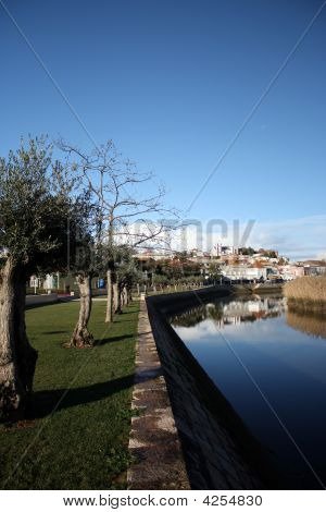 Picture of grass river and trees with urban background (Silves Portugal) stock photo