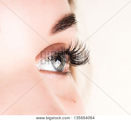 Beautiful young woman eyelash extension. Woman eye with long eyelashes. Beauty salon concept. stock photo