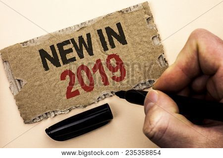 Writing note showing  New In 2019. Business photo showcasing Fresh Era Latest Year Period Season Annual Coming Modern written by Man Holding Marker tear Cardboard Piece Plain Background. stock photo