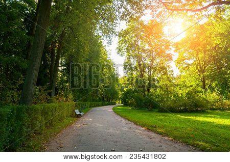 Autumn September Landscape. Bench At The Autumn Alley Under Colorful Desiduous Autumn Trees. Park Au