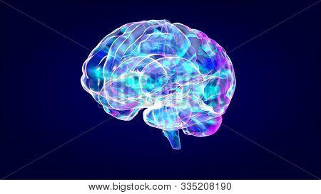 Brain xray, human anatomy, 3D Illustrated neurons stock photo