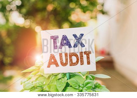 Word writing text Tax Audit. Business concept for examination or verification of a business or individual tax return Plain empty paper attached to a stick and placed in the green leafy plants. stock photo