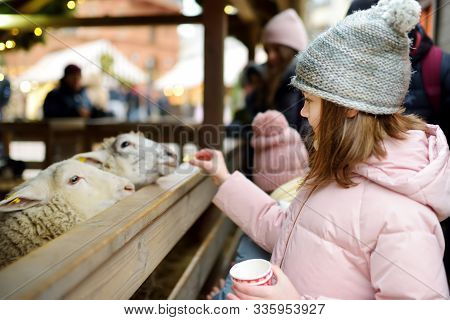 Two cute young sisters having fun feeding sheep in a small petting zoo on traditional Christmas market in Riga, Latvia. Happy winter activities for kids. Feeding holiday animals. stock photo
