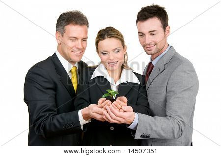 Business team holding a fresh new plant on palm, symbol of green, new and growing business stock photo