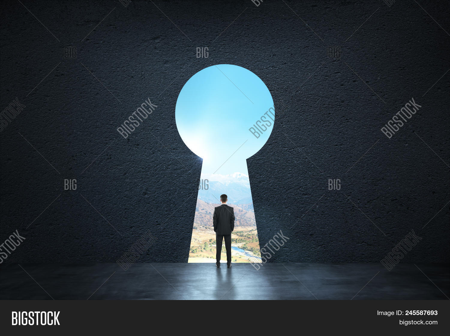 3d,abstract,access,achieve,achievement,activity,against,alone,back,background,black,business,businessman,career,concept,concrete,dark,door,dream,enter,entrance,entry,floor,future,goal,hole,idea,inside,interior,key,keyhole,landscape,light,man,open,opportunity,progress,research,room,shadow,solution,standing,success,successful,sunlight,thinking,view,viewpoint,wall,way