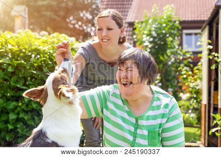 Mentally Disabled Woman With A Second Woman And A Companion Dog, Concept Learning By Animal Assisted