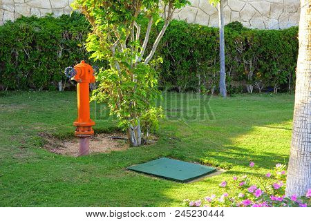 Red fire hydrant on a background of green grass. Fire hydrant or fire pump, represents the point of connection, through which firefighters can enter the water supply. Active fire protection component. stock photo
