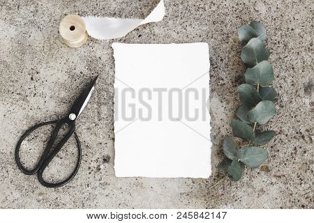 Feminine styled stock photo, greeting card mockup. Green silver dollar eucalyptus branch, black vintage scissors, silk ribbon, blank cotton paper card. Grunge concrete background., flat lay, top view stock photo
