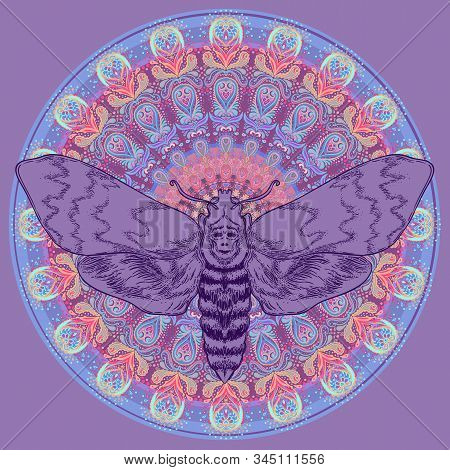 Moth over mandala. Beautiful vintage round pattern. Vector illustration. Psychedelic neon composition. Indian, Buddhism, Spiritual Tattoo, yoga, spirituality. stock photo