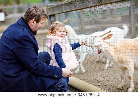 Adorable cute toddler girl and young father feeding little goats and sheeps on a kids farm. Beautiful baby child petting animals in the zoo. man and daughter together on family weekend vacations. stock photo