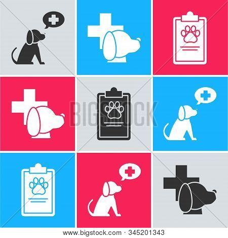 Set Veterinary clinic symbol, Veterinary clinic symbol and Clipboard with medical clinical record pet icon. Vector stock photo