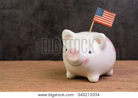 United State economy, investment or financial assets and savings concept ,piggy bank with United state national flag on wood table dark background. stock photo