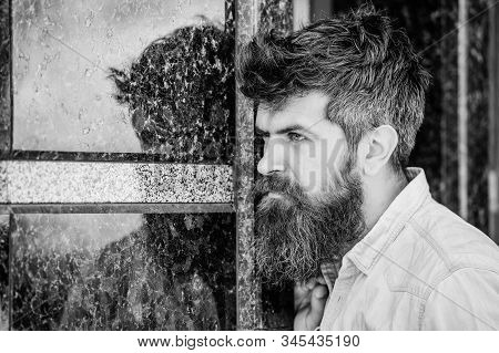 Beard grooming. Beard care. Masculinity and manliness. Man attractive bearded hipster posing outdoors. Confident posture of handsome man. Guy masculine appearance with long beard. Barber concept stock photo