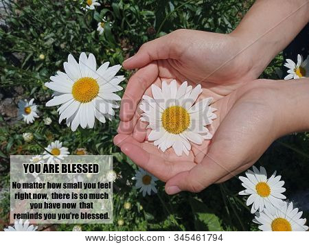 Inspirational motivational quote - You are blessed. No matter how small you feel right now, there is so much you have now that reminds you, you are blessed. With background of daisy flower blossom in young woman hands. stock photo
