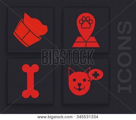 Set Veterinary clinic symbol, Veterinary clinic symbol, Map pointer with veterinary medicine hospital and Dog bone icon. Vector stock photo