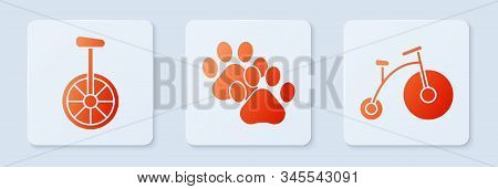 Set Paw print, Unicycle or one wheel bicycle and Vintage bicycle with one big wheel and one small. White square button. Vector stock photo