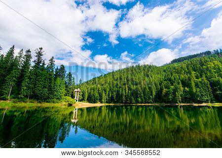 synevir mountain lake in summertime. great outdoor nature scenery. coniferous forest with tall trees on the shore reflecting in clear water. deep blue sky with clouds. beautiful landscape stock photo
