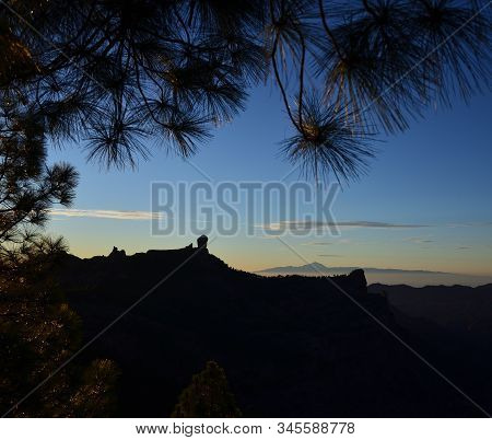 Mountain landscape among the pines at sunset, natural park of Roque Nublo, Gran Canaria, Canary Islands stock photo