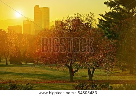 Sunset Light. Girl on a Park Tree Denver Colorado Skyline and Beautiful Sunset Light. Autumn Theme. Cities Collection. stock photo