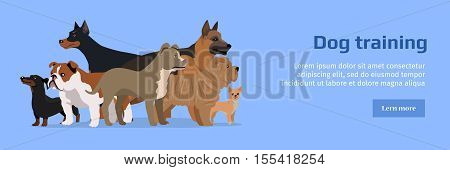 Professional dog training banner. Group of different breeds dogs on blue background. Website horizontal template. Dog service. Vector illustration in flat style. Cartoon dog character, pet animal