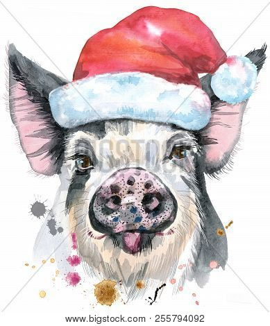 Cute piggy. Pig with Santa hat for T-shirt graphics. Watercolor pig in black spots illustration stock photo