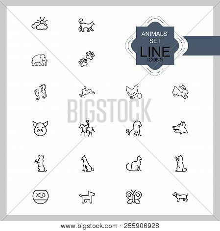 Animals icons. Set of line icons. Dog, elephant, fish bowl. Fauna concept. Vector illustration can be used for topics like nature, farm stock photo