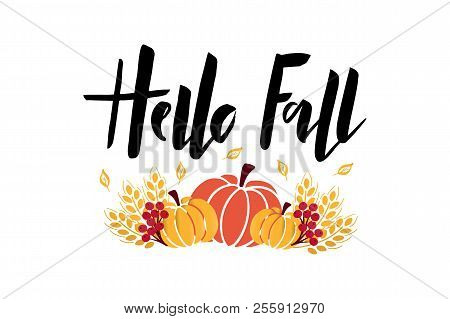 Hello Fall - hand drawn lettering phrase with harvest symbols. Harvest fest poster design. Autumn festival invitation. Fall party template. For postcard or invitation card, banner. Vector illustration. stock photo