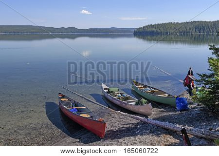 Loading Canoes for Adventure in Shoshone Lake in Yellowstone National Park in Wyoming stock photo