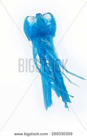 Plastic bottle recycled in a jellyfish figure. Reuse garbabe. Isolated stock photo