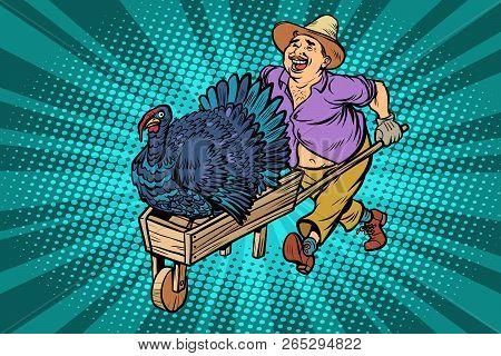 turkey bird, thanksgiving day holiday. farmer, man with a wooden wheelbarrow. Comic cartoon pop art retro vector illustration drawing stock photo