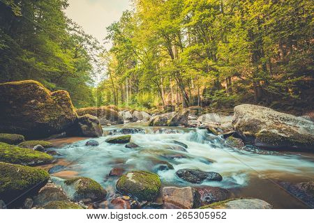 Beautiful River In Forest Nature. Peaceful Toned Nature Background. Relaxing Forest Landscape, Artis