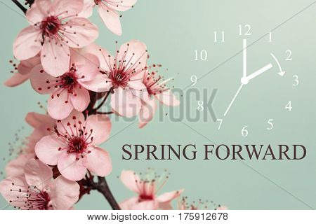 Spring Forward - Daylight Saving Time Begins