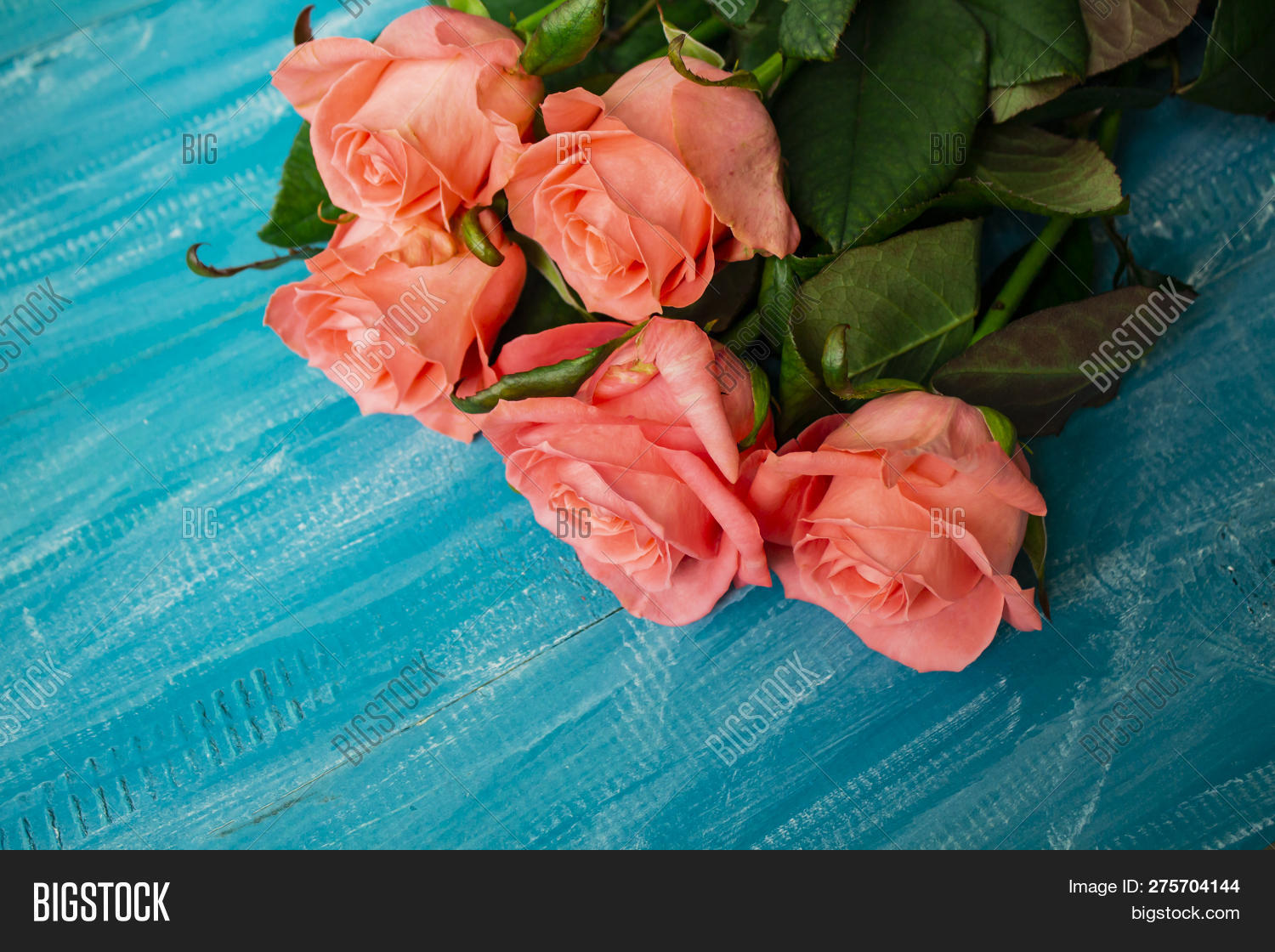 alloy,artistically,background,beautiful,beauty,border,botanical,bouquet,card,colorful-flower,concept,day,decoration,flowers,rose