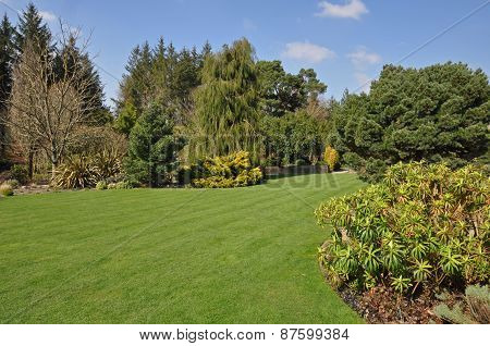 Perfect lawn within an established English country garden boarders and mature trees and shrubs add to the flow of the garden. stock photo