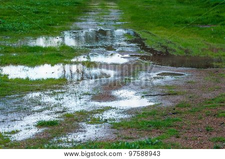 puddles of water with indistinct reflections of trees on gravelly dirt track in lush green grassy paddock stock photo