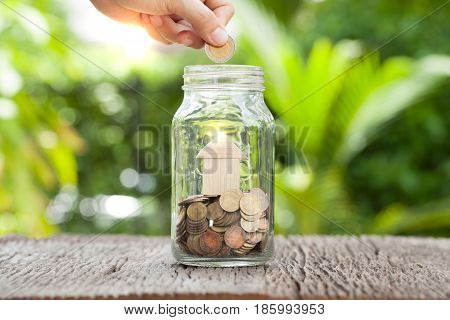 women hand putting money coin in gless Saving money concept concept of financial savings to buy a housetrees growing in a sequence of germination on piles of coins Growth business money. stock photo