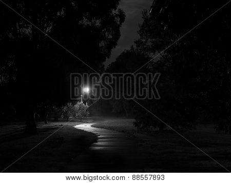 Creepy dark bike path lit by street light in Glen Waverley Australia after light rain and some fog stock photo