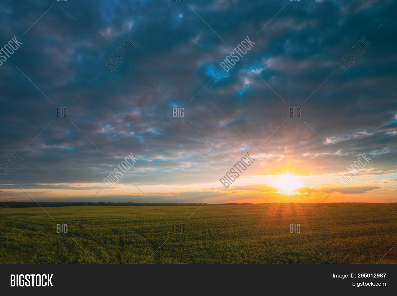 agriculture,beautiful,bright,cloud,colorful,colour,countryside,dawn,evening,farm,field,grass,green,ground,horizon,landscape,light,meadow,morning,nature,nobody,orange,outdoor,park,rural,scene,scenery,scenic,shine,sky,skyline,spring,summer,sun,sunlight,sunny,sunray,sunrise,sunset,sunshine,view