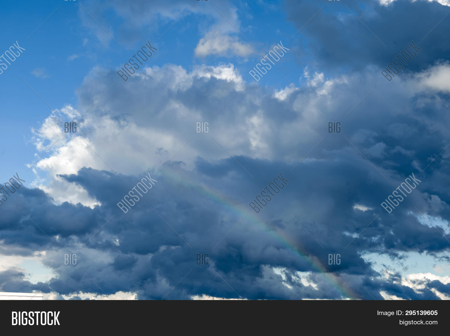 Sky Rainbow Forest. Sky Rainbow Forest On White Background. Rainbow Sky Landscape. Rainbow Backgroun