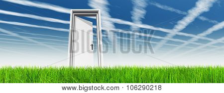 High resolution green, fresh and natural 3d conceptual grass over a blue sky background banner, a op