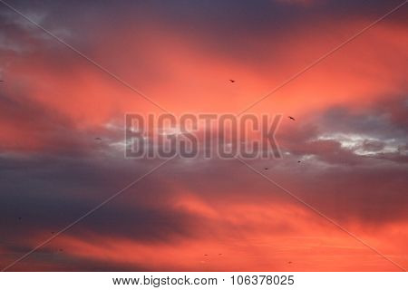 blue sky with bright scarlet and red sunset