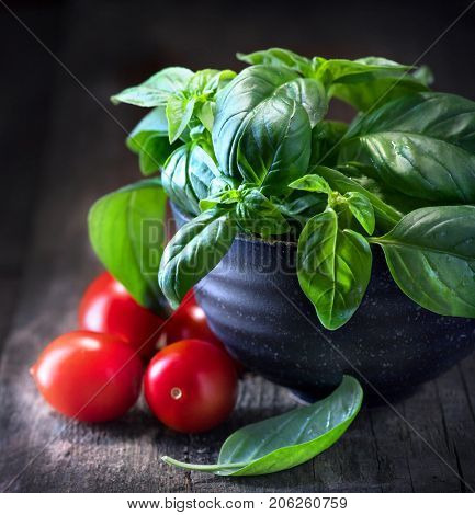 Basil and tomatoes on wooden table. Italian Homemade Food ingredients still life. Cherry tomatoes, fresh basil leaves. Cooking Pasta. Dinner. Mediterranean cuisine. Rustic style dark still-life. stock photo
