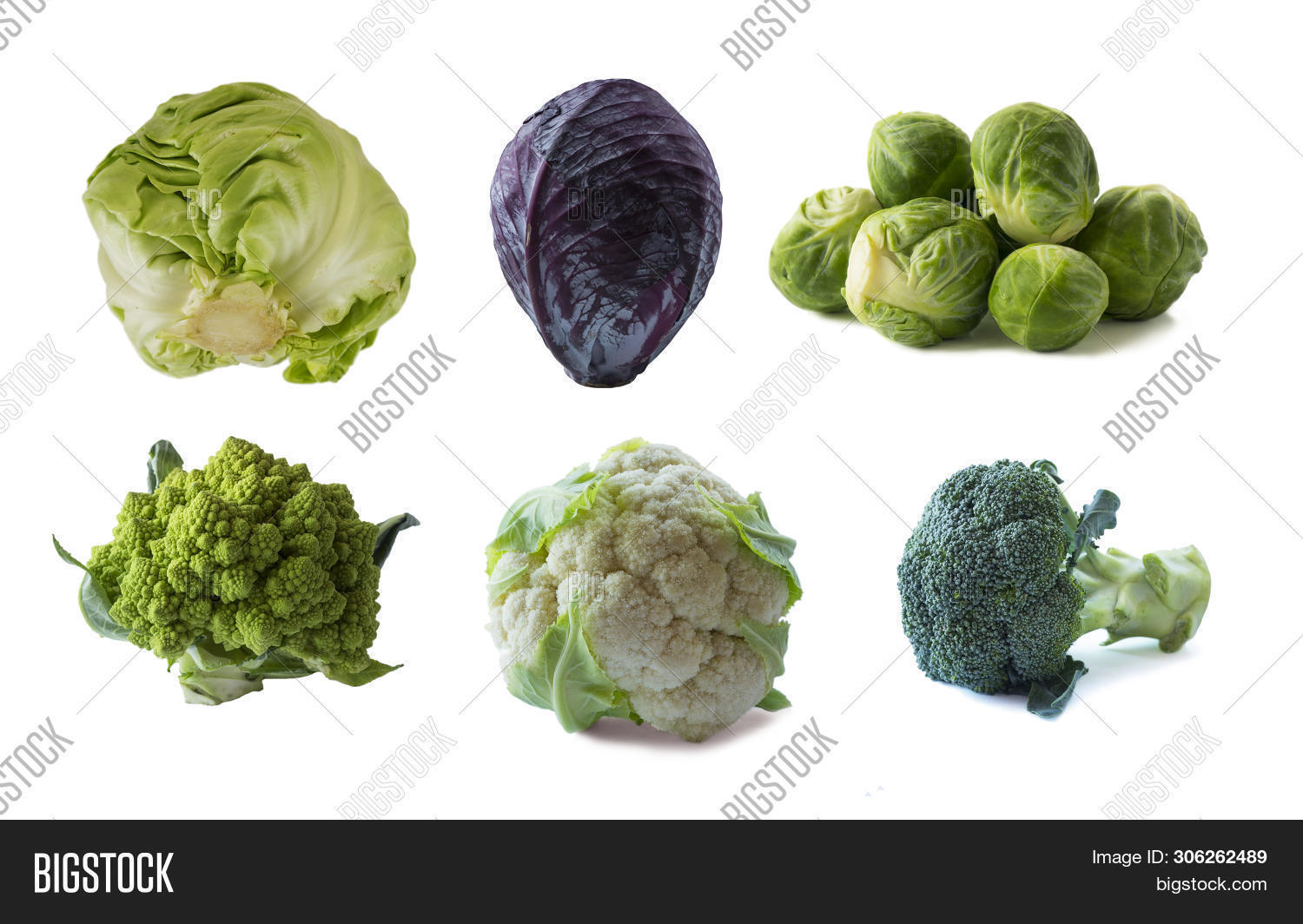 Romanesco,agriculture,antioxidants,assortment,background,banner,broccoli,brussels,bunch,cabbage,cauliflower,close,closeup,copy,cut,cutout,eating,food,fresh,freshness,green,healthy,ingredient,isolate,isolated,market,nobody,nutrition,nutritious,on,organic,out,packaging,packed,placard,plant,raw,space,sprout,studio,top,up,variety,vegetable,vegetarian,view,vitamin,white