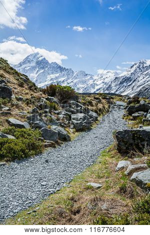 Hiking path to Mount Cook, New Zealand-Lg Fridge Magnet Skin (size 36x65)