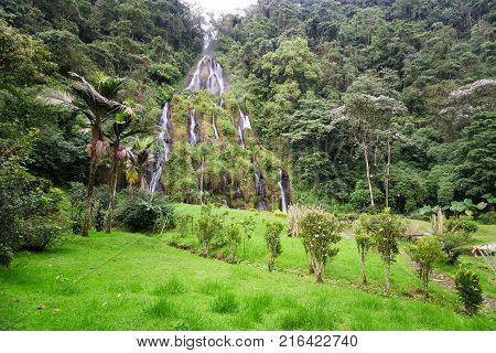 The jungle surrounds the waterfall near the Santa Rosa Thermal Spa in Santa Rosa de Cabal in Colombia. stock photo