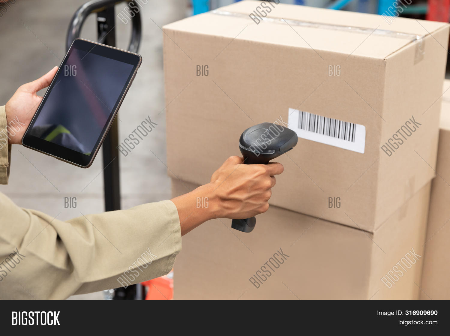 business,cardboard box,checking,communication,connection,deliver,digital tablet,distribution,distribution warehouse,factory,female,freight,freight transportation,global communication,goods,hand,holding,industry,job,logistics,maintaining,management,material,mixed-race,mixed-race person,occupation,package,packaging,pallet jack,part of,reading,scanning,screen,shipping,standing,storage,storehouse,supply,touchscreen,uniform,warehouse,wireless technology,woman,worker,working,workplace,young adult,young women