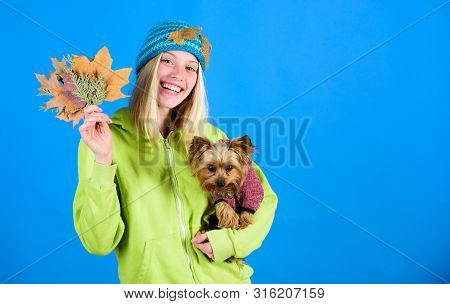 Health Care For Dog Pet. Pet Health Tips For Autumn. Regular Flea Treatment. Girl Hug Cute Dog And H