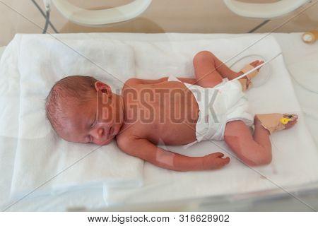 Premature Newborn Baby In The Hospital Incubator. Neonatal Intensive Care Unit