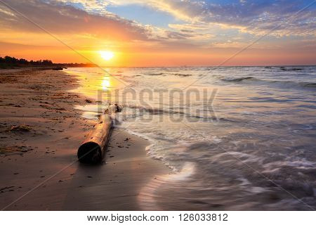 Trunk lying on the beach. Sunrise at the coast. can be used for climate beach sunset sunrise coastline nature landscape themes