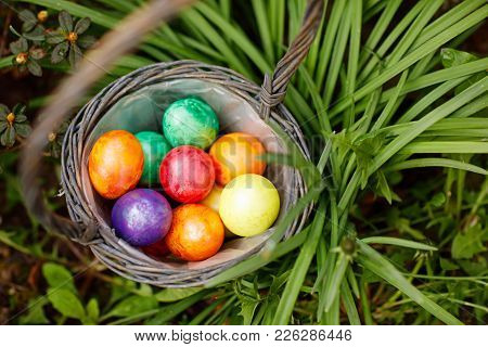 Closeup of colorful Easter eggs in basket outddors in green grass. Traditional symbol for christian and catholic holiday. egg for traditon hunt for children on Easter holiday stock photo